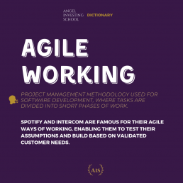 Agile Working Definition